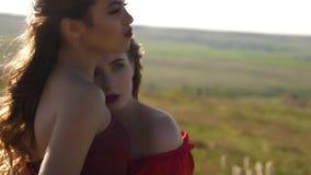 Ritratto di una coppia le donne stanche attraenti lesbiche stock footage
