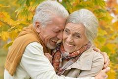 Ritratto di una coppia senior felice in parco Fotografie Stock