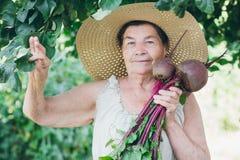 Ritratto di una donna anziana in un cappello tenendo le barbabietole Fotografia Stock Libera da Diritti