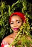 Ritratto di una giovane signora con le foglie verdi nei precedenti immagine stock