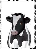 Ritratto di una mucca illustrazione di stock