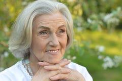 Ritratto di una posa anziana della donna del beautifil Fotografia Stock