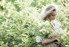 Ritratto di una ragazza affascinante in un'erba alta al tramonto, Fotografia Stock