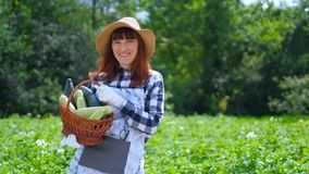 Ritratto di una ragazza che raccoglie zucca fresca sulla piantagione organica stock footage