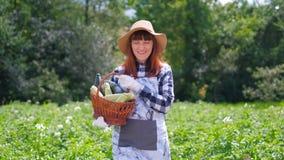 Ritratto di una ragazza che raccoglie zucca fresca sulla piantagione organica archivi video