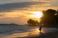 Ritratto di una ragazza con la siluetta di camminata del cane sulla spiaggia alla s Immagini Stock