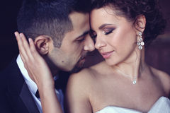 Ritratto di una sposa e di uno sposo Immagine Stock