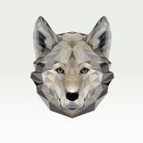 Ritratto di vettore del lupo poligonale Illustrazione del cane del triangolo per uso come stampa sulla maglietta e sul manifesto  Immagine Stock Libera da Diritti