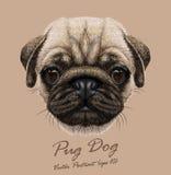 Ritratto di vettore di giovane cane del carlino Fotografia Stock