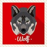 Ritratto di vettore di un lupo Ritratti simmetrici degli animali Illustrazione di vettore, cartolina d'auguri, manifesto icona Fr Fotografia Stock