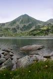 Ritratto di vista del lago Bucura Immagini Stock