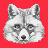 Ritratto disegnato a mano del Fox Fotografia Stock Libera da Diritti