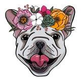 Ritratto disegnato a mano di un bulldog francese con la corona dei fiori illustrazione vettoriale