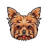 Ritratto domestico del cane dell'Yorkshire terrier Testa sveglia dell'Yorkshire terrier su fondo bianco Testa di cane, fronte, mu illustrazione di stock