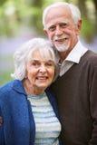 Ritratto esterno delle coppie maggiori felici immagine stock