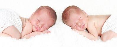 Ritratto gemellato neonato del bambino immagine stock libera da diritti