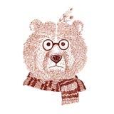 Ritratto grafico dell'orso con la sciarpa Fotografia Stock Libera da Diritti