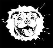 Ritratto illustrato del cucciolo di Staffordshire bull terrier Fotografia Stock Libera da Diritti