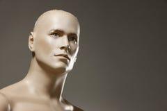 Ritratto maschio del mannequin Fotografie Stock