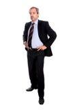 Ritratto maturo dell'uomo d'affari Fotografie Stock Libere da Diritti