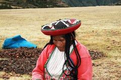 Ritratto peruviano Immagine Stock Libera da Diritti