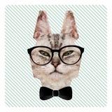 Ritratto poligonale di modo del gatto dei pantaloni a vita bassa in vetri e farfallino Illustrazione di Stock