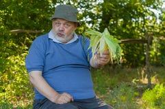 Ritratto positivo dell'agricoltore senior Immagini Stock Libere da Diritti