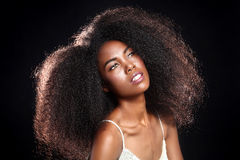 Ritratto sbalorditivo di una donna di colore afroamericana con il grande ha Fotografia Stock Libera da Diritti
