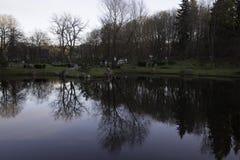 Ritratto scenico degli alberi riflessi in acqua Immagine Stock
