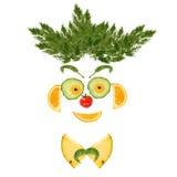 Ritratto sorridente dell'uomo fatto delle verdure e della frutta Fotografia Stock