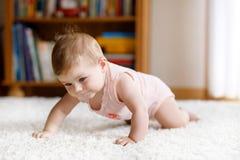 Ritratto strisciante adorabile del ` s della neonata a casa Piccolo corpo portante divertente della ragazza ed imparare strisciar fotografia stock
