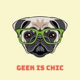 Ritratto sveglio del cane nerd del carlino Illustrazione di vettore su bianco Immagini Stock