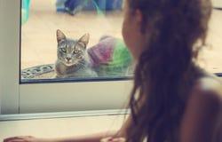 Ritratto tonificato della ragazza che esamina fuori la finestra il gatto Fotografie Stock