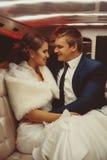 Ritratto verticale di incantare appena le coppie merried nell'amore Fotografie Stock Libere da Diritti
