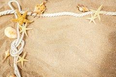 Ritrovamenti della spiaggia sui precedenti di legno bianchi Fotografie Stock Libere da Diritti