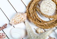 Ritrovamenti della spiaggia sui precedenti di legno bianchi Fotografia Stock