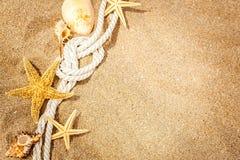 Ritrovamenti della spiaggia sui precedenti di legno bianchi Fotografie Stock