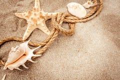 Ritrovamenti della spiaggia sui precedenti di legno bianchi Immagini Stock Libere da Diritti