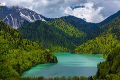 Ritsa湖,寡妇国家公园Ritsa,阿布哈兹 库存照片