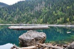 ritsa ландшафта озера abkhazia рисуночное Стоковая Фотография