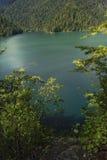 RITSA jezioro Fotografia Stock