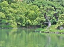 Ritsurin trädgård i Takamatsu, Japan Royaltyfri Foto