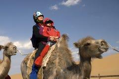 Ritten för gammal kvinna en kamel Fotografering för Bildbyråer