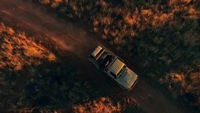 Ritten van een de jacht off-road auto in de savanne stock footage