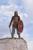 Ritter auf einem Felsen Stockbilder