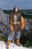 Ritter auf einem Felsen Stockfotografie
