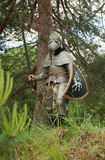 Ritter in der Rüstung Lizenzfreies Stockfoto