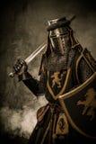 Ritter mit Klinge und Schild lizenzfreie stockfotos