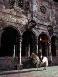 Ritter und Kathedrale stock abbildung