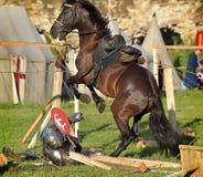Ritter war von seinem Pferd gefallen Stockfoto